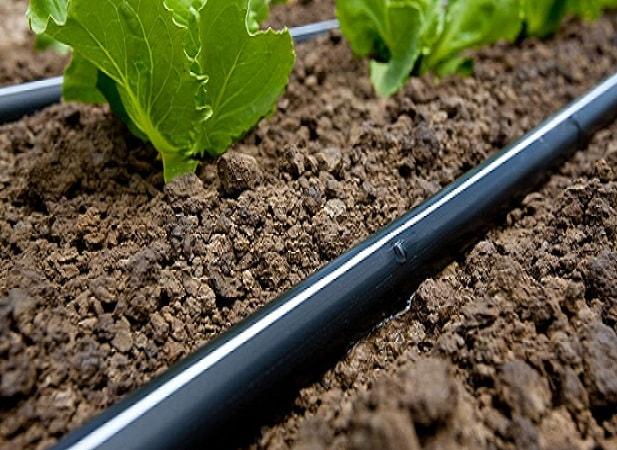 drip irrigation-min